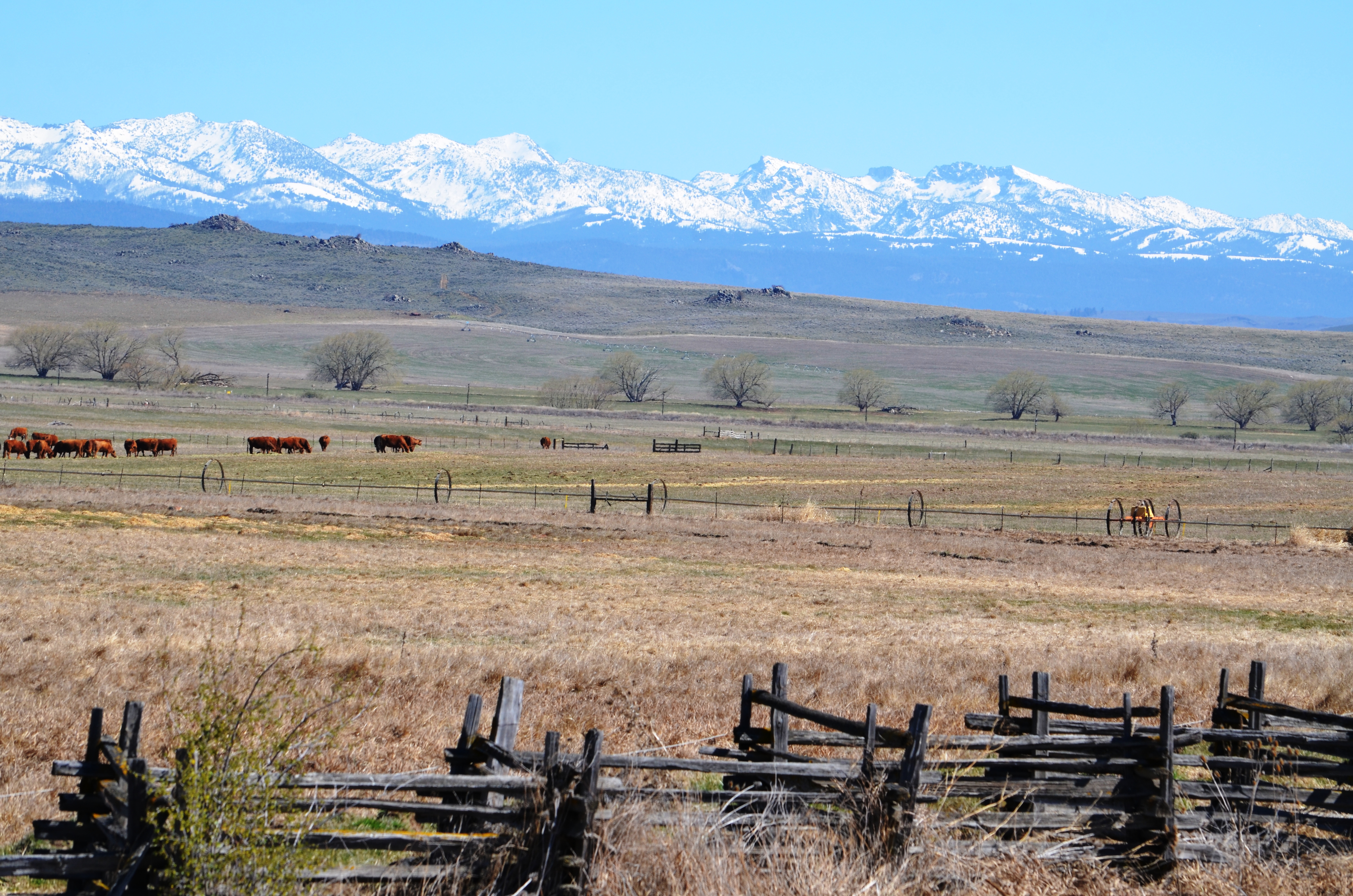 Homes For Sale In Baker County Oregon